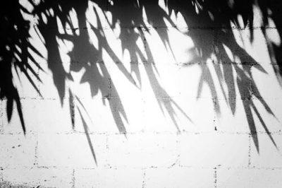 sennik cień