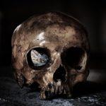 Sennik czaszka