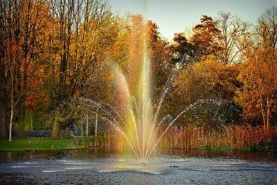 sennik fontanna