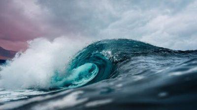 sennik ocean